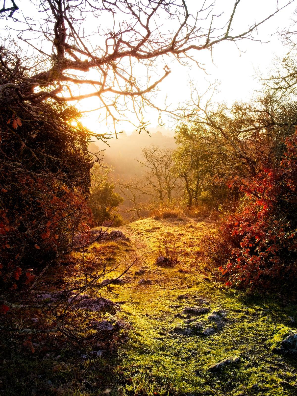 Morning sun in Vinon-sur-Verdon, Provence, France by Sam Davis Professional Landscape Photographer